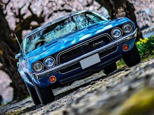 チャレンジャー  1973 Rallyのカスタム事例画像 TamaOnlineさんの2020年04月17日21:34の投稿