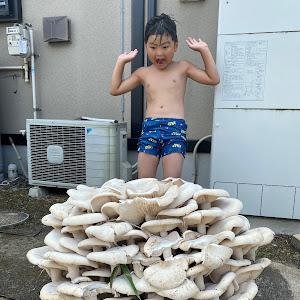 ジムニー JA12Cのカスタム事例画像 hiroha1さんの2021年07月23日19:05の投稿