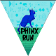 Download Spinx Run For PC Windows and Mac