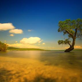 solitude by Anta Abine Hiro - Landscapes Waterscapes ( landscape )
