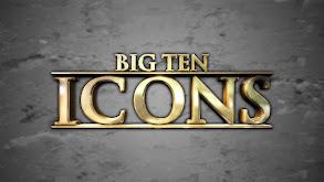 Big Ten Icons thumbnail