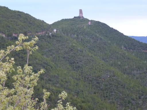 Turó de la Torre o de Castellnou