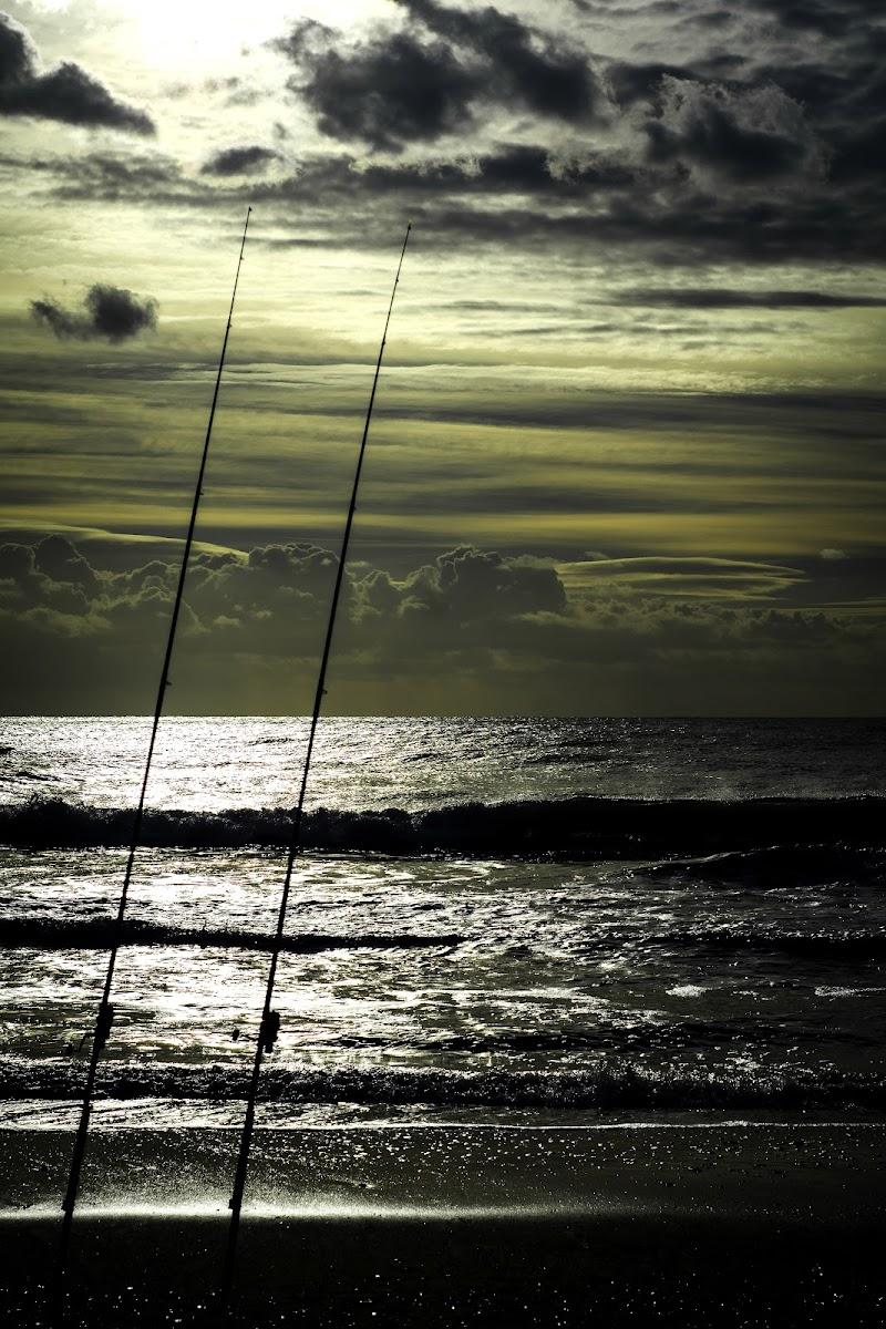 Un bel pescare di Skarlet