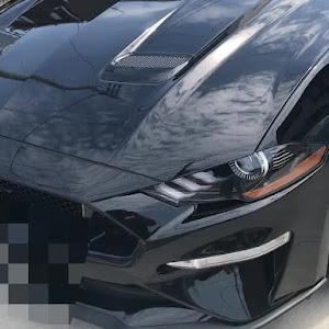 マスタング  18y GT プレミアム ファストバックのカスタム事例画像 オレンジバードさんの2018年09月07日22:17の投稿