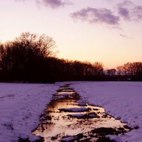 Reflections by Sarah Minnihan - Landscapes Waterscapes ( reflection, sunset, snow )