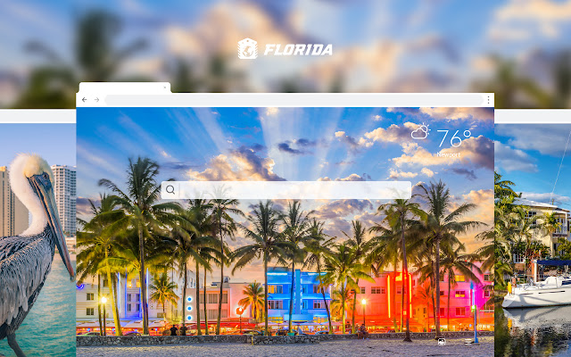 Florida HD Wallpapers New Tab