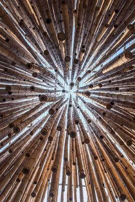 Bamboo di Nicola Rossignoli photo2017
