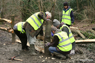 Photo: Building a fence from local wood to prevent trampling and the creation of new paths