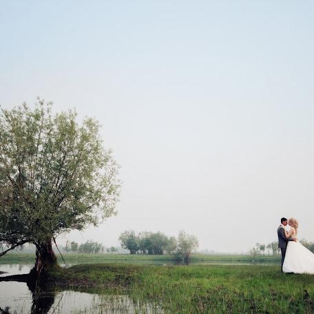 Wedding photographer Aleks Ross (AlexRosstudio). Photo of 06.10.2017