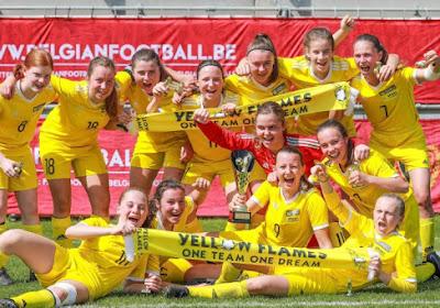 """""""David tegen Goliath"""": Voetbal Vlaanderen moet inbinden met project Yellow Flames, clubs halen slag thuis"""