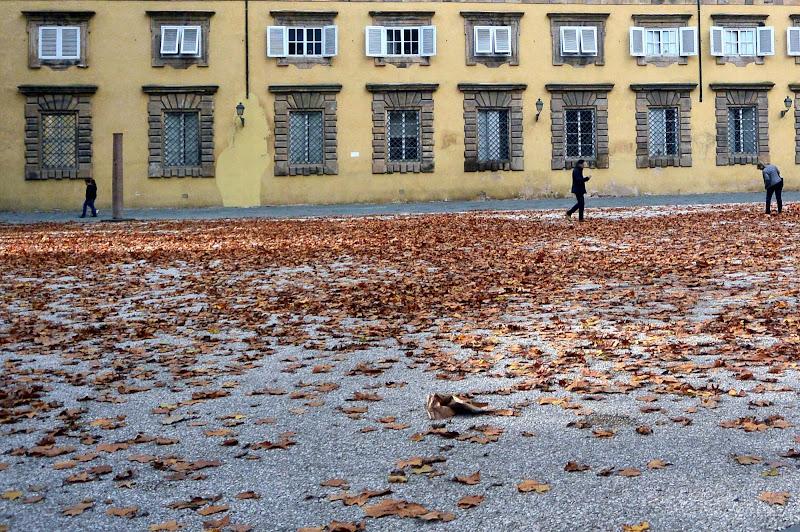 autunno in città di Gabry1