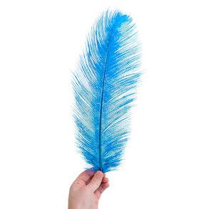 Plym, stor 40-45cm blå