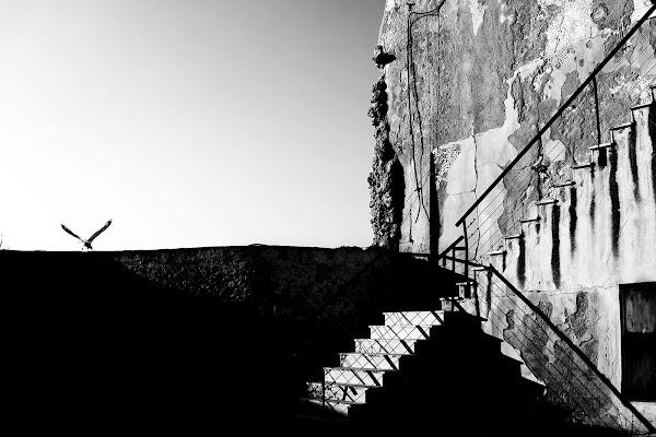 la rocca del corvo di faranfaluca