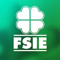 FSIE icon