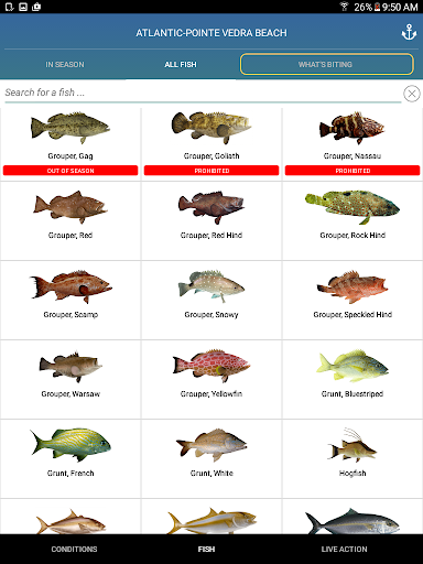 Download Pro Angler - Fish like a Pro! MOD APK 8