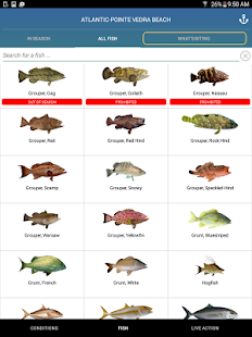 Pro angler fish like a pro android apps on google play for Saltwater fishing apps