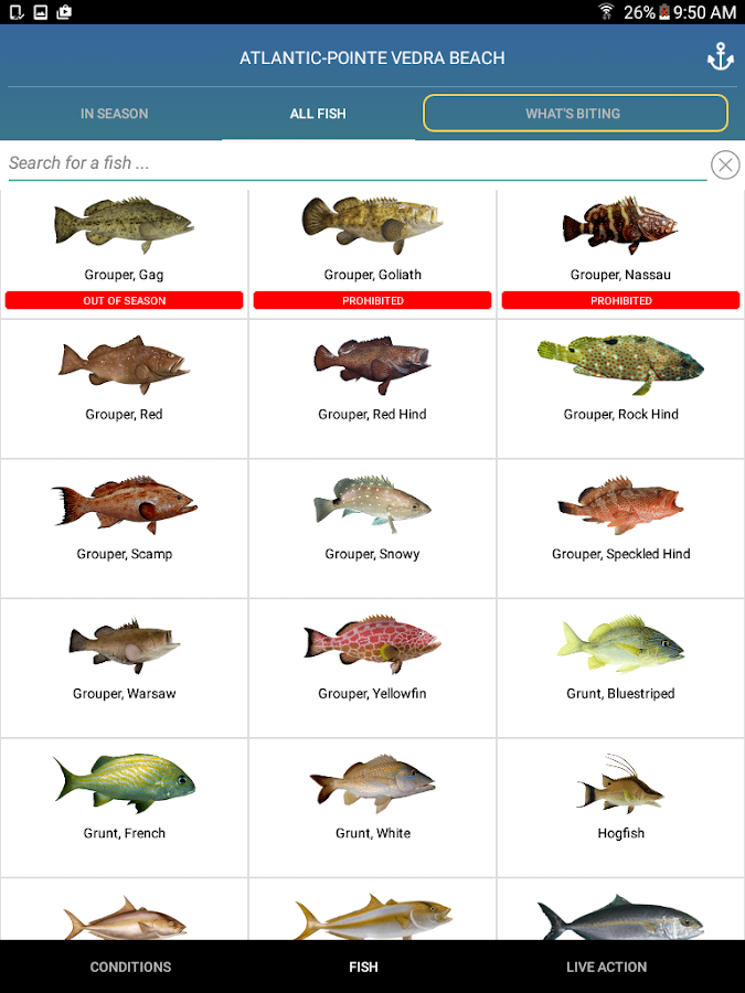 Pro angler fish like a pro android apps on google play for Tides for fishing app