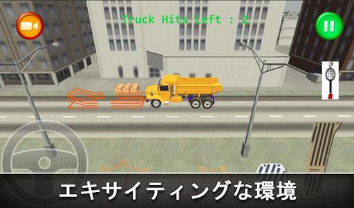 輸送トラック運転手の3Dシム