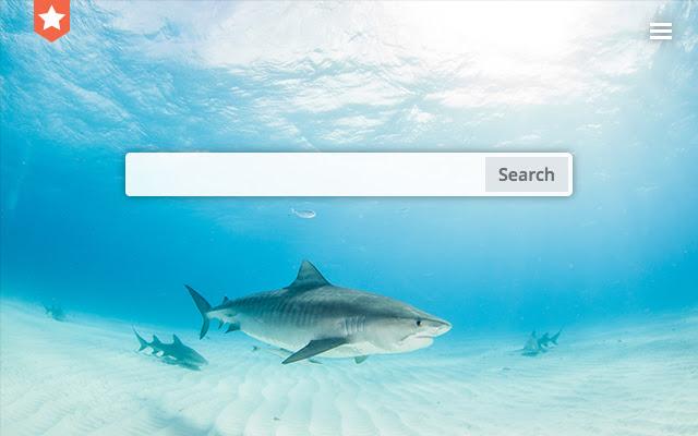Sharks. New tab