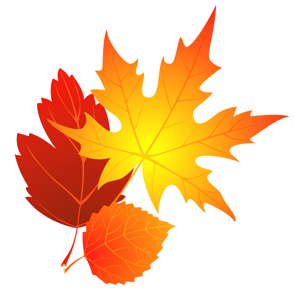 Transparent-fall-leaves-clipart-0.png