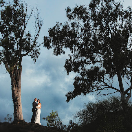 Wedding photographer Jose Novelle (josenovelle). Photo of 13.02.2016
