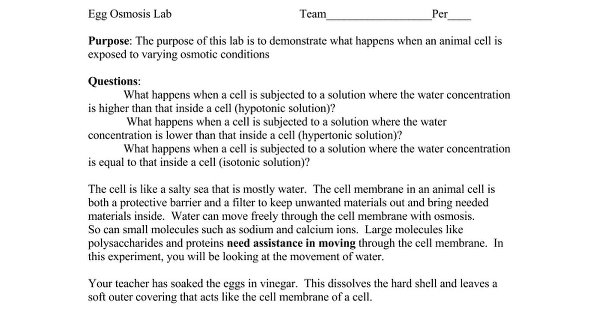 Egg_Osmosis_Lab_and_student_worksheet - Google Docs