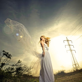 *** by Victor Vertsner - Wedding Bride ( wail, dress, wedding, bride, sun )