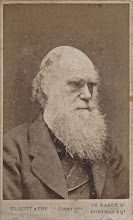 Photo: Charles Darwin in 1874, from a carte de visite. Photographer: Elliott & Fry. First published: ? Copyright of scan: G. W. Beccaloni
