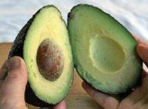 Cut avocados in half and peel carefully. Mix vinegar, oil, paprika, salt and pepper....