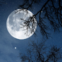 Relax Night - Nature sounds: sleep & meditation icon