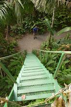 Photo: hoch auf die Hängebrücken in den Baumwipfeln - puentes colgantes