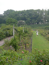 Photo: Jardin botanique