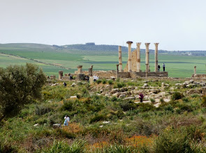 Photo: Volubilis - Capitol