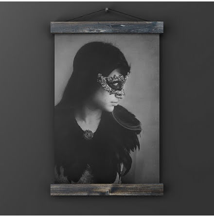 Poster - Shadow - 20 x 30