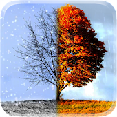 Winter and Autumn 3D Wallpaper