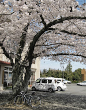 Photo: 松阪市嬉野地域振興局 (旧嬉野町役場)