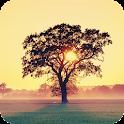 Tree Live Wallpaper icon