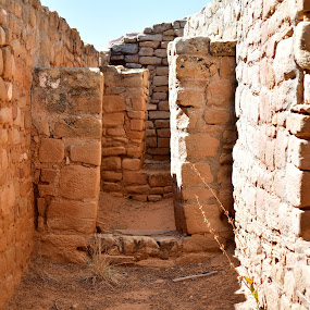 Sun Temple Mesa Verde by David Stemple - Buildings & Architecture Other Interior