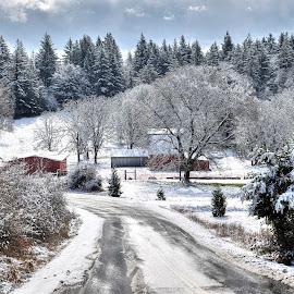 by Todd Klingler - Landscapes Mountains & Hills