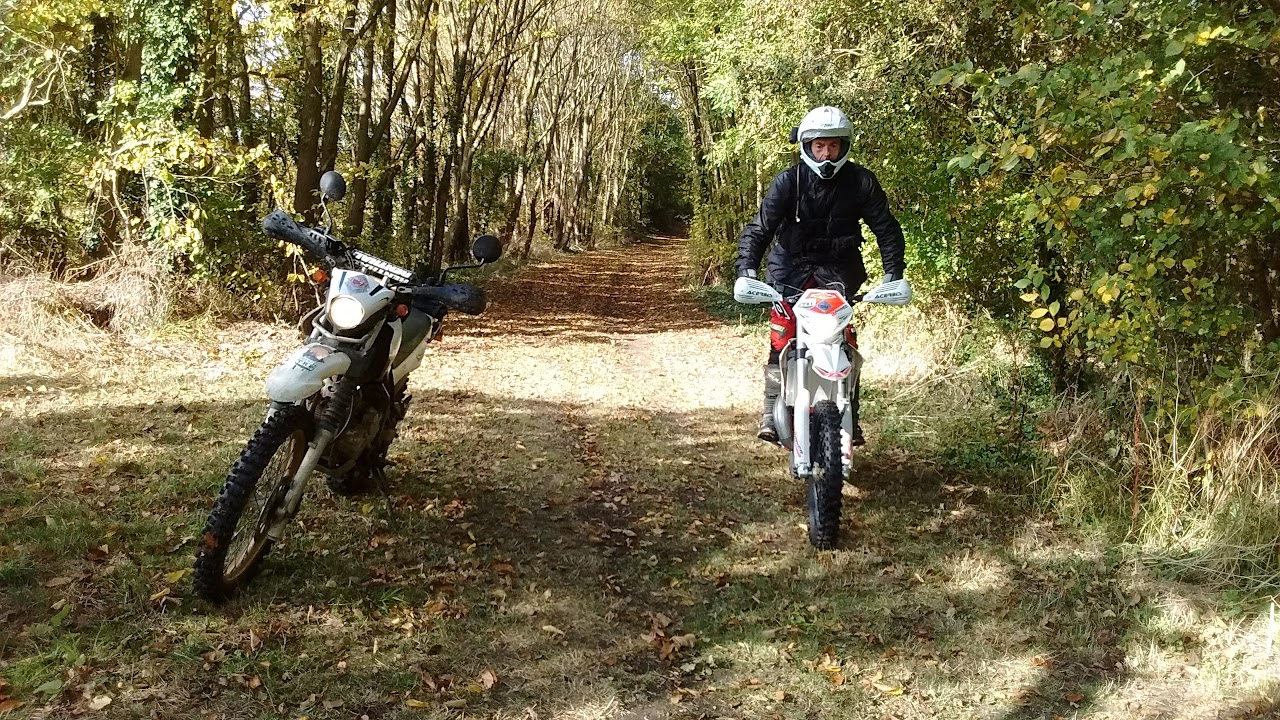 Serow