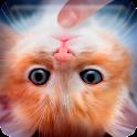 Погладь Кота: Симулятор Мяу icon