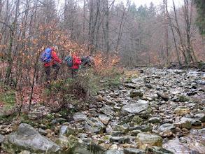 Photo: Langs de Helle - waar gaan ze 't zoeken!