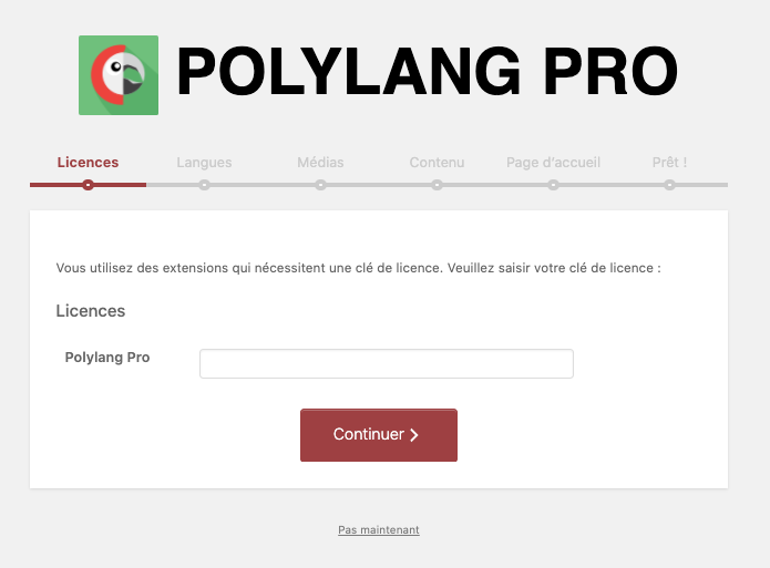 Wizard Polylang - traduire son site wordpress avec polylang WPformation