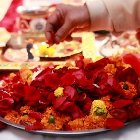 Wedding ceremony by Anurag Bhateja - Wedding Ceremony ( wedding, hindu wedding, india, flowers, indian wedding )