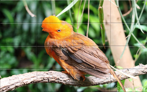 Sparrows Puzzle  screenshots 5