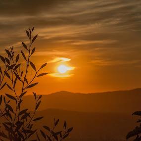 by Rui Quinta - Landscapes Sunsets & Sunrises