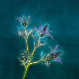 Thistle  by Nathalie Rouquette - Digital Art Things ( thistle, electric )