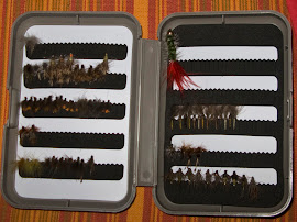 Кутиите с мухи на Дани Крилов - София