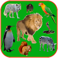 Animal stickers for whatsapp - WAStickerApps
