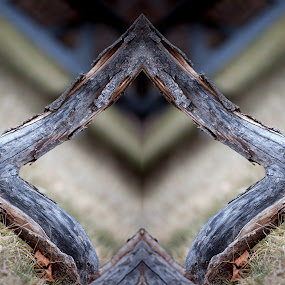 Huh by Shaun Schlager - Abstract Patterns